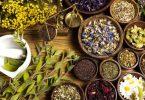 فوائد العلاج بالاعشاب والطب البديل