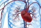 قصور الدورة الدموية اسبابها وعلاجها
