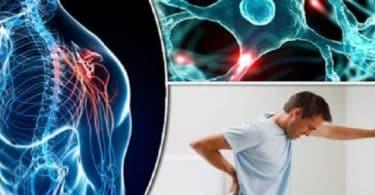 ما مرض ms وكيفية الوقاية منه