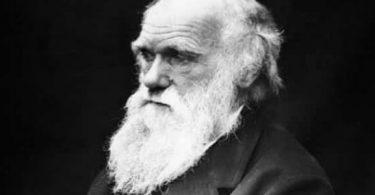 معلومات عن مؤسس نظرية التطور