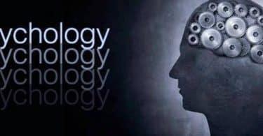 بحث عن علم النفس وعلاقته بالعلوم الأخرى
