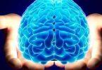 بحث عن كيمياء المخ بالمقدمة والخاتمة