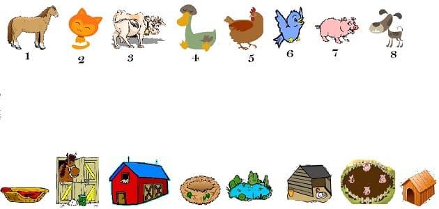 بيوت حيوانات وأسمائها