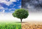 قارن بين مناخ المملكة ومناخ إندونيسيا pdf