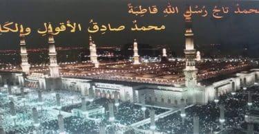 ما هي القصيدة المحمدية ؟ (1)