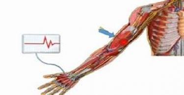 ما هو علاج ضعف الأعصاب