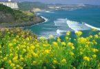 اين تقع جزيرة جيجو