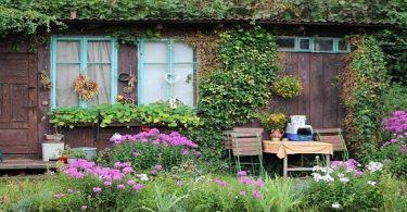 بحث عن الزراعة المنزلية pdf