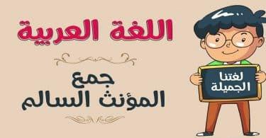 علامات إعراب جمع المؤنث السالم في اللغة العربية
