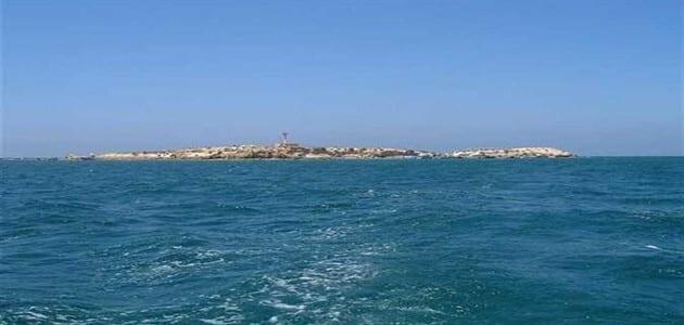 معلومات عن جزيرة نيلسون