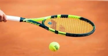 معلومات لا تعرفها عن لاعبة التنس ميركا فافرينيتش