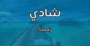 معنى اسم شادي Shady في علم النفس