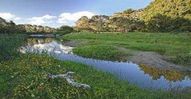 بحث عن الحفاظ على الاتزان البيئي (1)