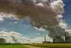 بحث عن قانون القدرة في النظام البيئي