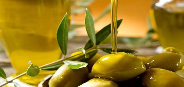 فوائد ورق الزيتون للبشرة والجسم
