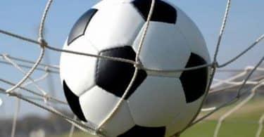 معلومات عن اللاعب أحمد الشناوي