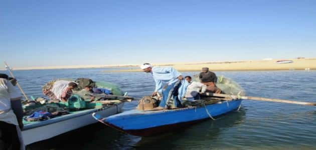 موضوع تعبير عن بحيرة مريوط