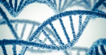 موضوع عن الهندسة الوراثية كامل