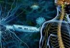 ما هو مرض تصلب الاعصاب وعلاجه