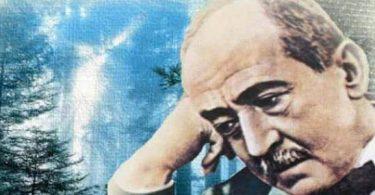 بحث عن أشعار أحمد شوقي (1)