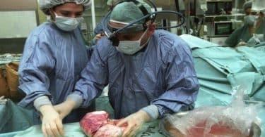 بحث قصير عن تجارة الاعضاء البشرية doc