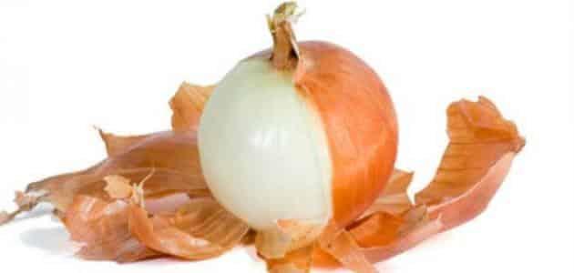 فوائد اكل البصل للحامل