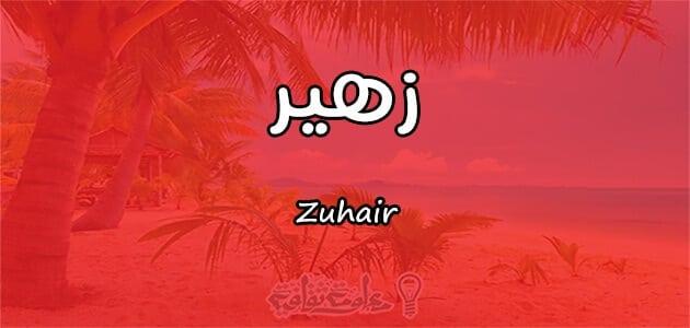ما معنى اسم زهير Zuhair في علم النفس