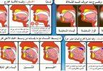 مخارج الحروف العربية وصفاتها