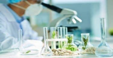 معلومات عامة عن كلية التكنولوجيا الحيوية
