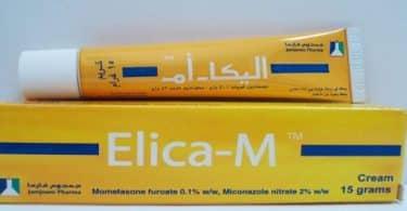 اليكا أم Elica M