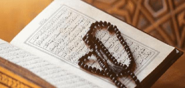 معلومات عن عدد أيات القرآن