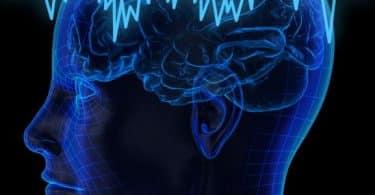 معلومات لا تعرفها رسم المخ