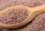معلومات نادرة عن بذرة القاطونة