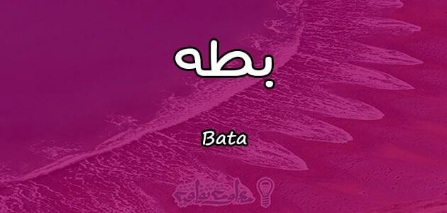 معنى اسم بطه Bata واسرار شخصيتها وصفاتها