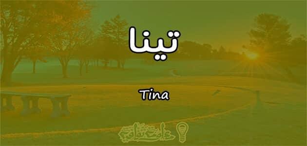 معنى اسم تينا Tina وصفات حاملة الاسم