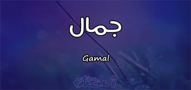 معنى اسم جمال Gamal في علم النفس