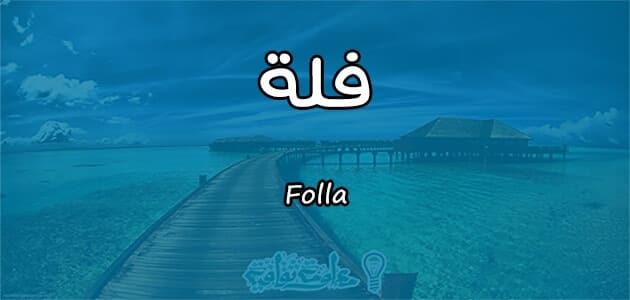 معنى اسم فلة Folla وصفات حاملة الاسم