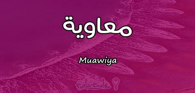 معنى اسم معاوية Muawiya واسرار شخصيته