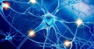 ما هي الامراض التي تصيب الجهاز العصبي