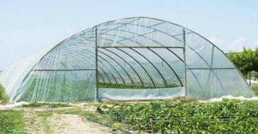 مشروع الصوب الزراعية .. الشركات + أماكن البيع