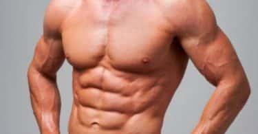 معلومات عن عضلات البطن