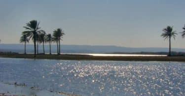 موضوع عن نهر الفرات