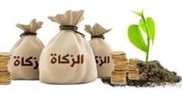 نصاب زكاة المال فى مصر دار الافتاء