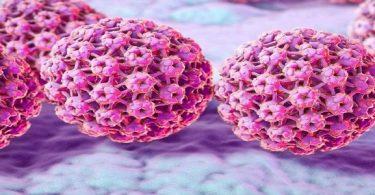 هل يمكن الشفاء من فيروس hpv