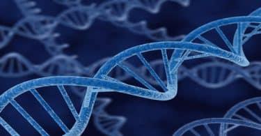 خصائص الشفرة الوراثية واهميتها