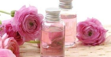 الفرق بين ماء الورد وماء الزهر وماء الكادي