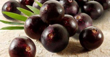 فوائد فاكهة الاساي بيري