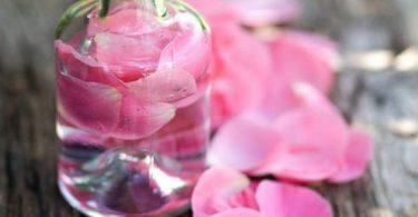 هل شرب ماء الورد يزيد الوزن؟