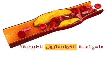 ما هو معدل الكوليسترول الطبيعي في الدم