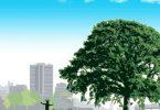 معلومات غريبة عن فوائد الشجرة